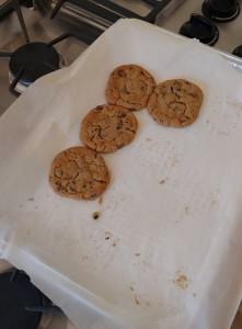 The first batch of Chef Nancy's cookies did not last very long....