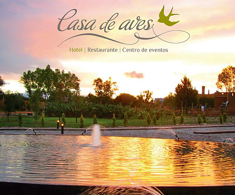 JUST LISTED: Casa de Aves, a Hotel Estate in Beautiful San Miguel de Allende, Mexico